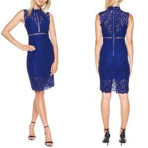 Bardot Cobalt Blue Lace Sheath Dress Size L